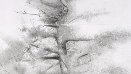 Study for Big Pine, detail