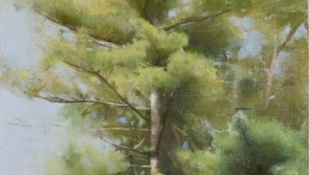 Pines, Summer
