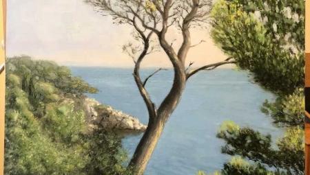 Zlatka-Pine-Tree