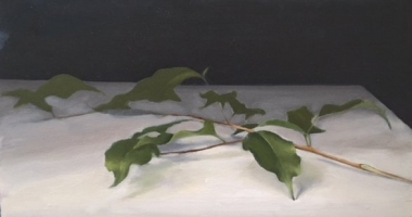 Wendy Prather Burwell, Ficus Branch