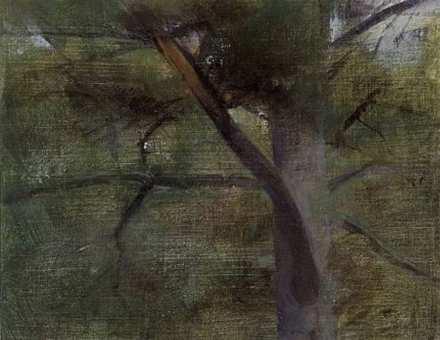Christopher Gallego, blog post: 5 unusual habits to keep you growing artistically, Image: White Pine with Broken Branch, 2007